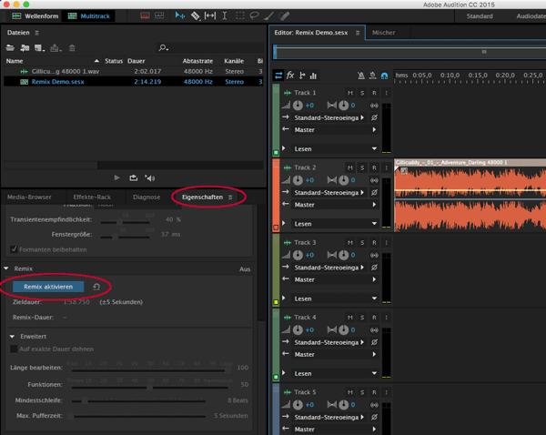 Screenshot Adobe Audition Remix