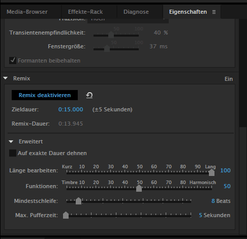 Audition Remix Parameter