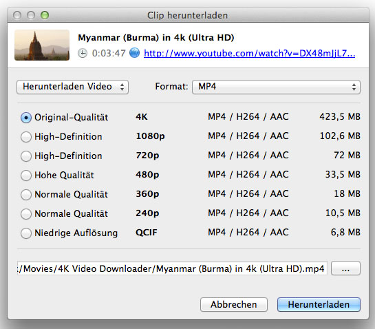 4K_Video_Downloader_2