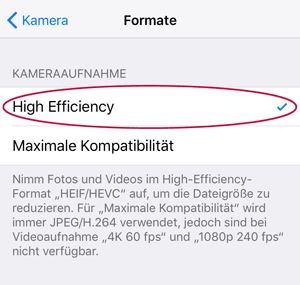 Screenshot iOS 11 Kamera High Efficiency Setting