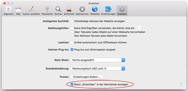 Screenshot Safari Entwickler Menü