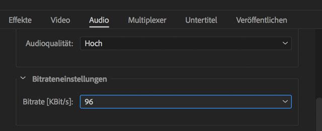 Screenshot Exporteinstellungen Audio für IGVTV