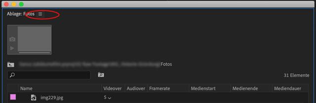 Screenshot Adobe Premiere Panel-Menü