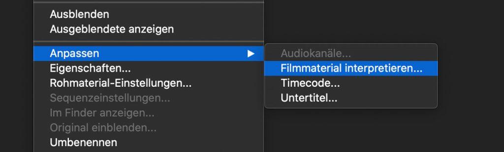 Screenshot Premiere Filmmaterial interpretieren