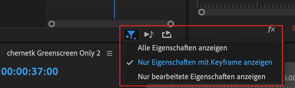 Screenshot neue Filterfunktion in den Effekteinstellungen in Premiere