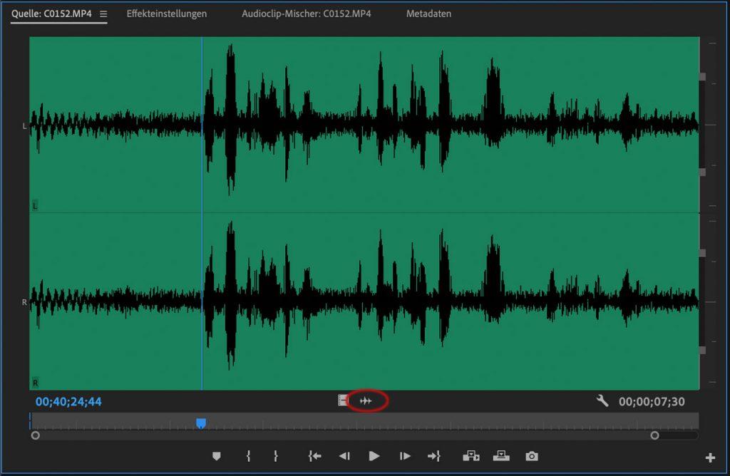 Audio Wellenform im Premiere Quellmonitor darstellen